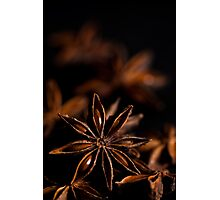 Star Anise Study Photographic Print