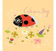 Cute As A Bug Photographic Print