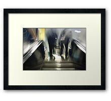 Step - 2012 Framed Print