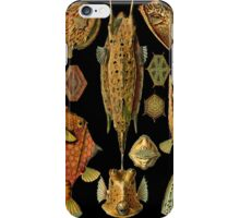 Fishes on Black iPhone Case/Skin
