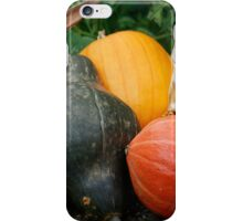 Fall Harvest II iPhone Case/Skin