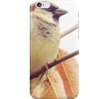 Not A Partridge In A Pear Tree  iPhone Case/Skin