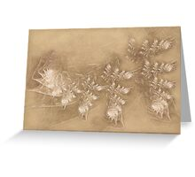Lilac Dreams on Parchment Greeting Card