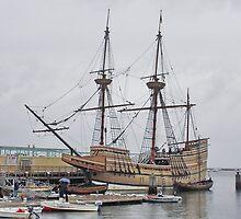 The Mayflower by AnnDixon