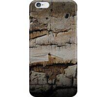 Aged Aspen iPhone Case/Skin