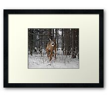 On to You Framed Print