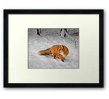 Over Here Framed Print