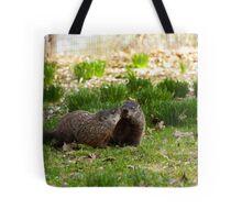 Groundhog Love Tote Bag