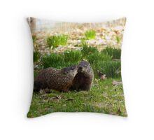 Groundhog Love Throw Pillow