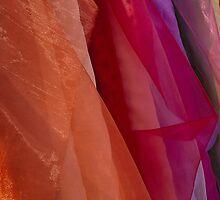 Sheer Colour by Paul Barnett