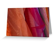 Sheer Colour Greeting Card