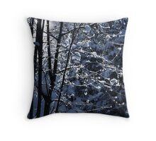 2012 - winterwald Throw Pillow