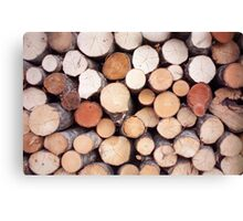 Wood logs Canvas Print