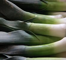 Leeks by Paul Boyle
