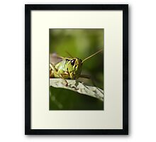 CHEESE.... Framed Print