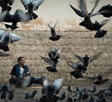 Flying lifes .. by Ali Bazzi