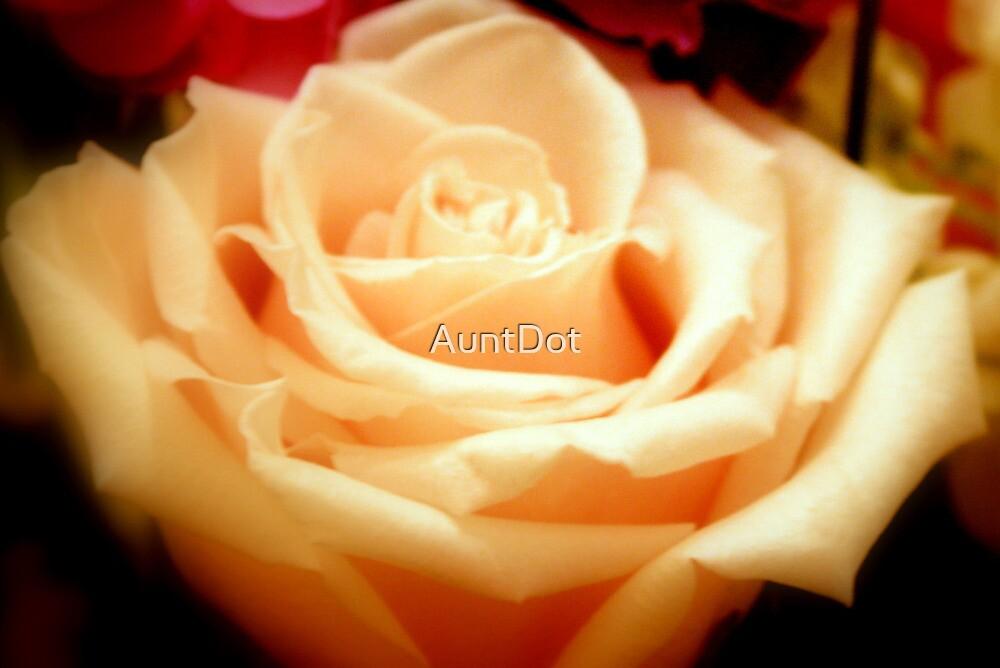 Vanilla Cream by AuntDot