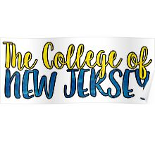 The College of New Jersey Two Tone Poster