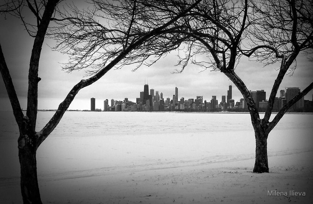 Winter Chicago by Milena Ilieva