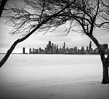 Winter Chicago by Milena Ilieva