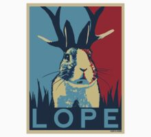 LOPE by A.S. Williams