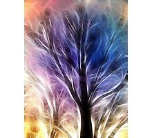 Fractal Rays of a Happy Tree Photographic Print