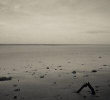 Lee Point Rd Beach  by Nick Browne