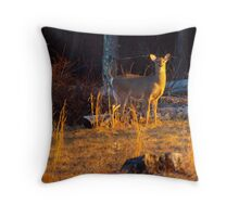 By the Mornings Light Throw Pillow