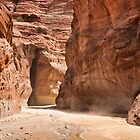 Paria Canyon Dust by Kim Barton