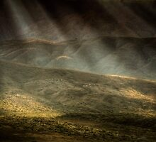 Light and levels by Bob Larson