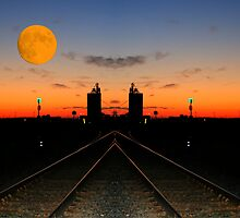 """Moon-o-rail"" by Larry Trupp"
