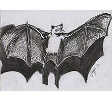 VERNON THE FRUIT BAT Photographic Print