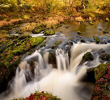 Waterfall, River Dovey by Simon Pattinson