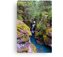 Avalanche Gorge Falls Canvas Print