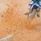 Motocross Roost by RickyC