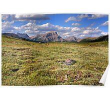 Sunshine meadows III (HDR) Poster