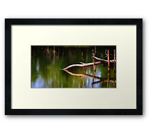 That Sinking Feeling... Framed Print