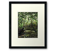 Protruding natures lines #1 Framed Print