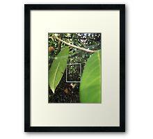 Protruding natures lines #17 Framed Print
