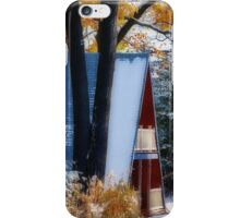 Between Autumn and Winter iPhone Case/Skin
