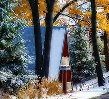 Between Autumn and Winter by Lois  Bryan