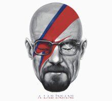 A Lab Insane by Vincent Carrozza