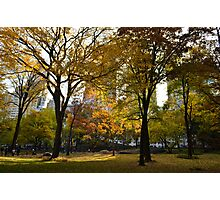 Winter coming in the central park Photographic Print