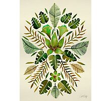 Tropical Symmetry – Olive Green Photographic Print