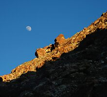 Moon Rise, Deep Canyon California by willprouty