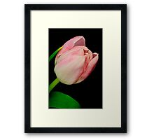 Looking Forward to Spring Framed Print