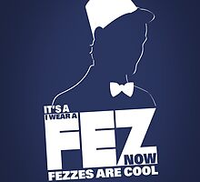 It's a fez. I wear a fez now. Fezzes are cool. by mcgani