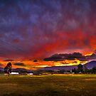 Sun King, sleeping flames by Miguel Avila
