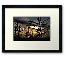Down on the Farm Framed Print