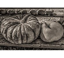 Pumpkin Pair Photographic Print